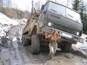 Услуги самосвалов(5-30 тонн).Вывоз мусора-Донецк