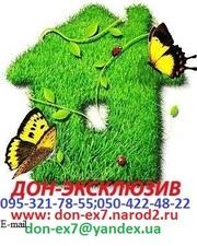 Куплю квартиру, дом у собственника г.Донецк!