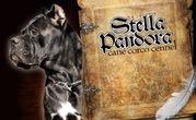 Щенки кане корсо из питомника Stella Pandora