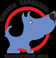 дрессировка собак, свиней
