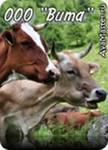 Кормовые добавки для животных