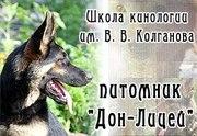 Инструктора по вязке собак.