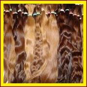 Волосы. Дорого Продать Волосы Мариуполь. Купим Волосы от 40 см
