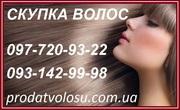 Волосы. Продать волосы дорого. Цена волос. Продажа волос Мариуполь.