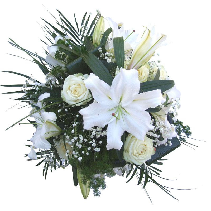 Служба доставки цветов в донецке где можно купить семена мимозы стыдливой
